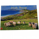 Irish Sheep  A4 Calendar 2018